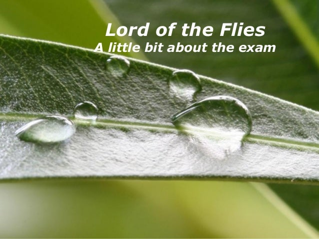 Powerpoint Templates Page 1Powerpoint Templates Lord of the Flies A little bit about the exam