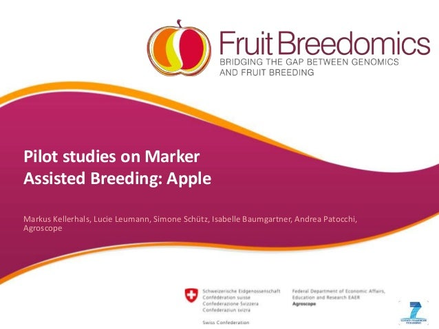 Pilot studies on Marker Assisted Breeding: Apple Markus Kellerhals, Lucie Leumann, Simone Schütz, Isabelle Baumgartner, An...