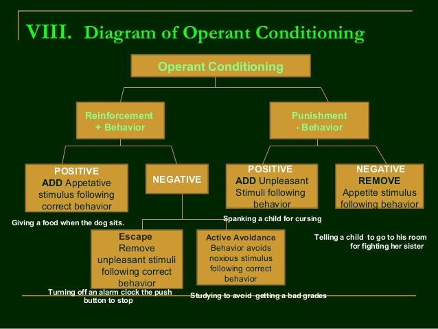 Skinner's theory on Operant Conditioning
