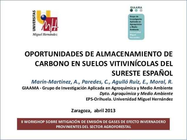 II Workshop sobre mitigación de gases de efecto invernaderoprovinientes del sector agroforestal.II WORKSHOP SOBRE MITIGACI...