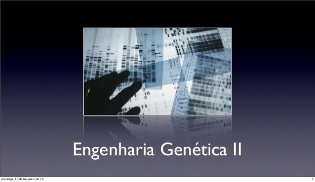 Engenharia Genética IIdomingo, 10 de fevereiro de 13                            1