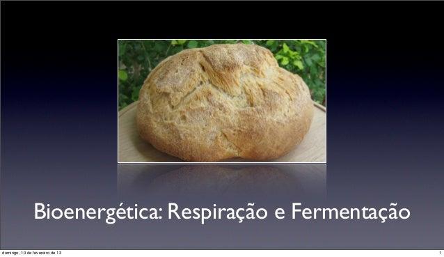 Bioenergética: Respiração e Fermentaçãodomingo, 10 de fevereiro de 13                           1