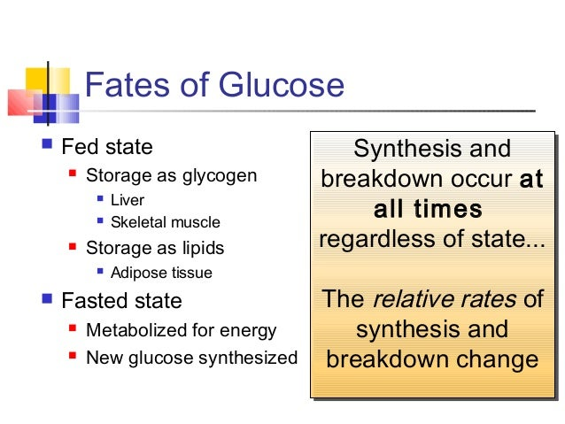 propionate metabolism