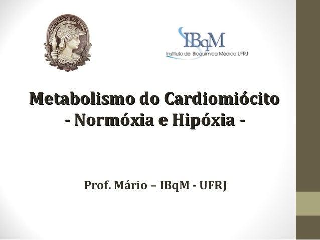 Metabolismo do Cardiomiócito - Normóxia e Hipóxia -  Prof. Mário – IBqM - UFRJ