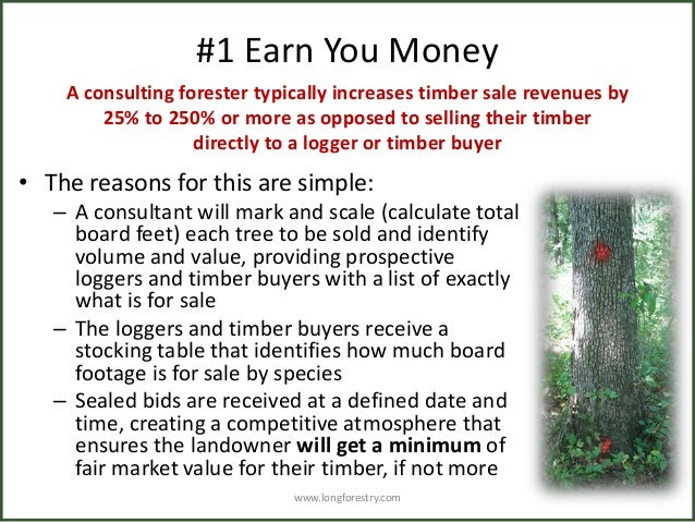 3 monetary benefits of using a consulting forester for How to calculate board feet in a tree