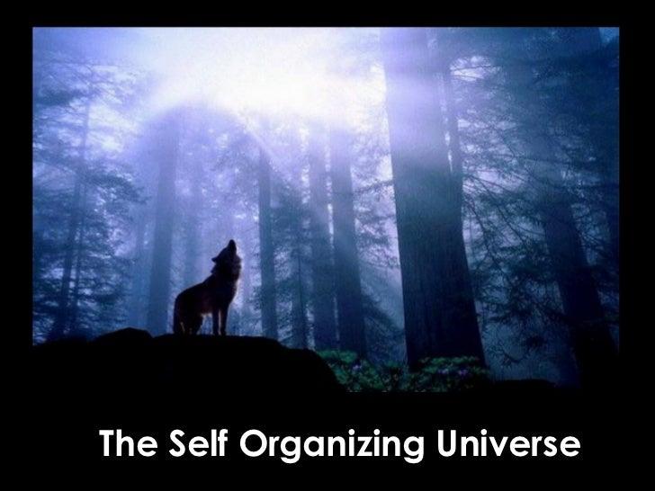 The Self Organizing Universe