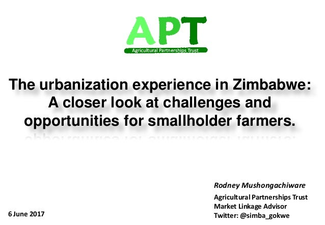 Sustainable economic development through market systems approach The urbanization experience in Zimbabwe: A closer look at...