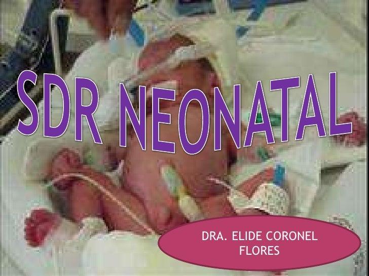 SDR NEONATAL<br />DRA. ELIDE CORONEL FLORES<br />