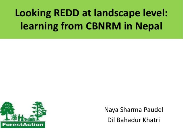 Looking REDD at landscape level: learning from CBNRM in Nepal  Naya Sharma Paudel Dil Bahadur Khatri