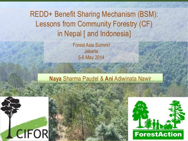 REDD+ Benefit Sharing Mechanism (BSM): Lessons from Community Forestry (CF) in Nepal [ and Indonesia] Naya Sharma Paudel &...