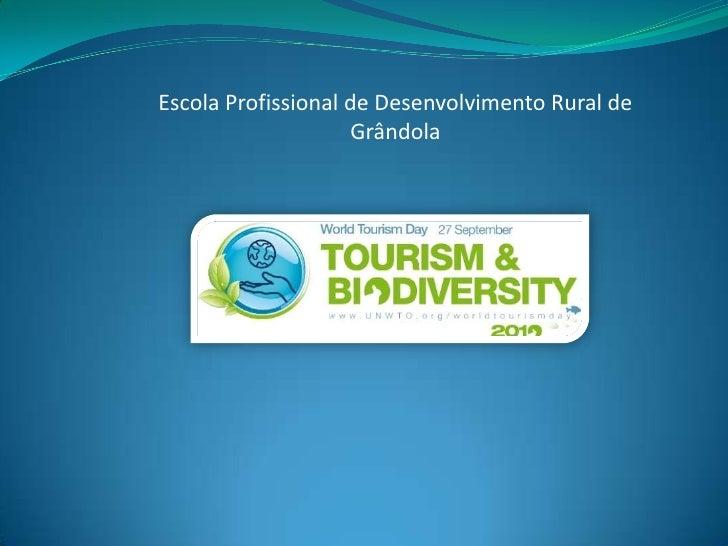 Escola Profissional de Desenvolvimento Rural de Grândola<br />