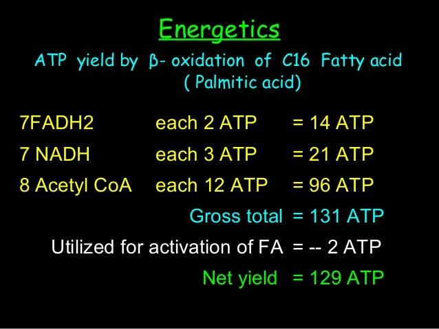 Oxidation Fatty Acids