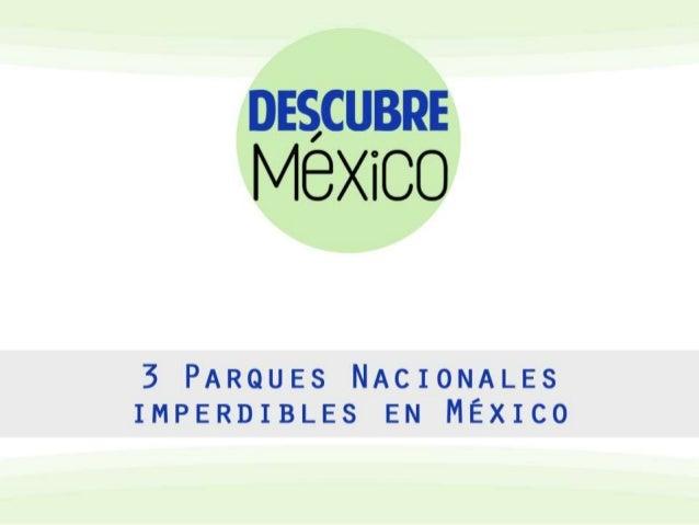 México, a lo largo y a lo ancho de su territorio, cuenta con más de sesenta Parques Nacionales, dentro de los cuales la vi...