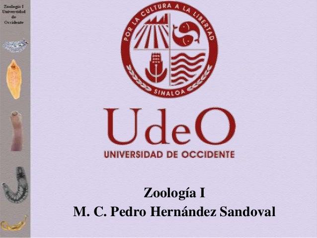 Zoología I M. C. Pedro Hernández Sandoval