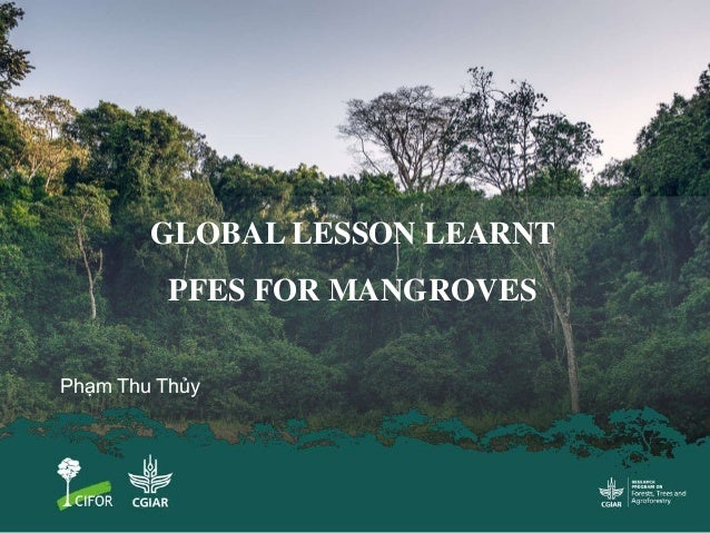 Phạm Thu Thủy GLOBAL LESSON LEARNT PFES FOR MANGROVES