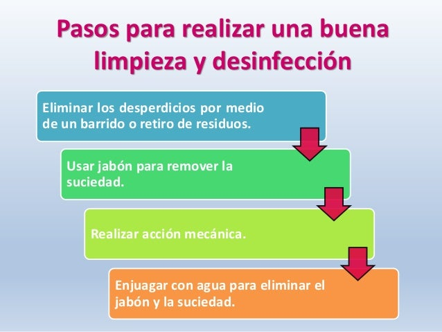 3 plan de saneamiento for Programa de limpieza y desinfeccion de una cocina