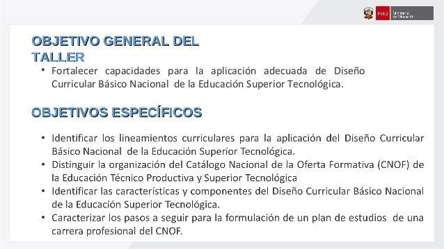 Dise o curricular b sico nacional de la educaci n superior for Diseno curricular nacional 2016 pdf