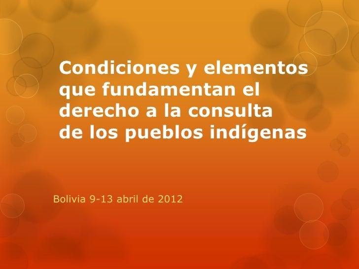 Condiciones y elementos que fundamentan el derecho a la consulta de los pueblos indígenasBolivia 9-13 abril de 2012