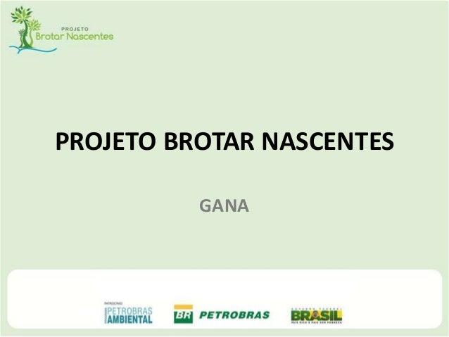 PROJETO BROTAR NASCENTES GANA