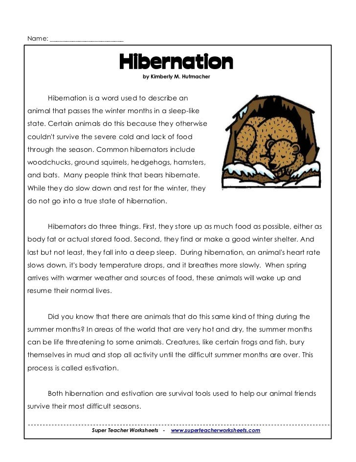 Hibernation Worksheets Kidz Activities