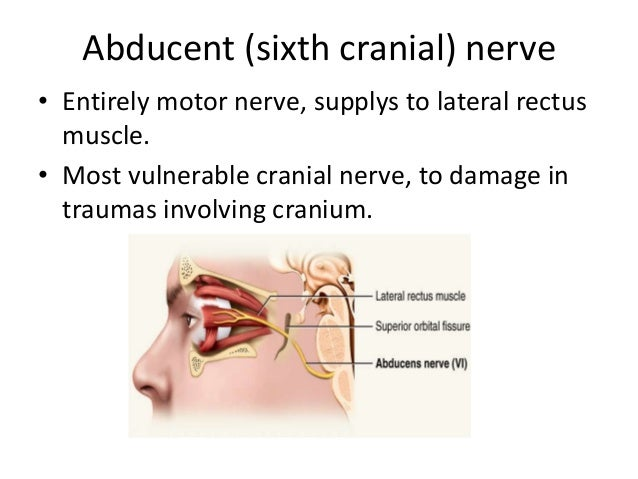 cranial nerve palsy and the sixth What is sixth nerve palsy there are 12 pairs of nerves (cranial nerves) that  control most of the functions of the head and neck these functions include eye.