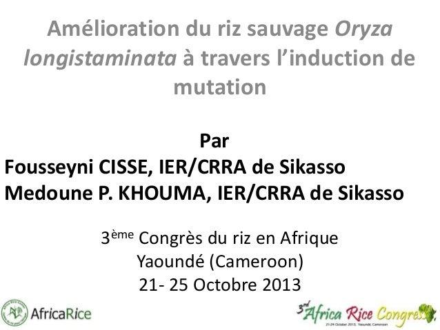 Amélioration du riz sauvage Oryza longistaminata à travers l'induction de mutation Par Fousseyni CISSE, IER/CRRA de Sikass...