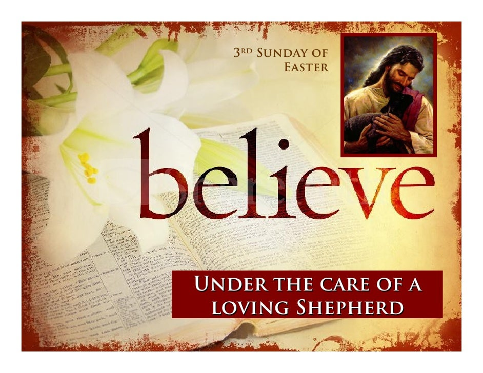 3rd Sunday of           Easter     Under the care of a  loving Shepherd