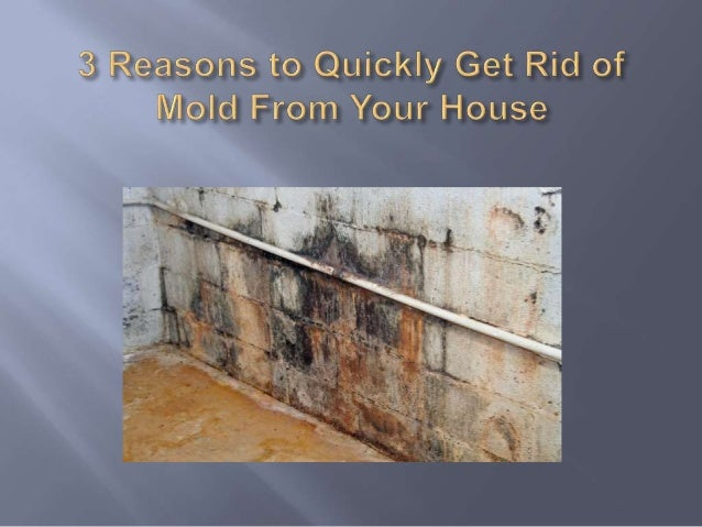 Mold can grow anywhere given the right food supply and enough moisture. How  to Remove Black Mold  Design  Mold Growing on Walls in House