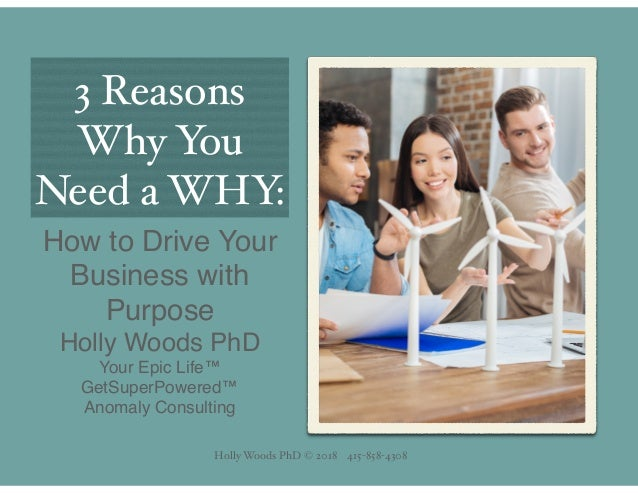 Holly Woods PhD © 2018 415-858-4308 3 Reasons Why You Need a WHY: How to Drive Your Business with Purpose Holly Woods PhD ...
