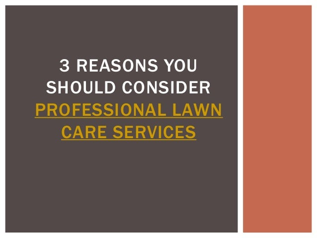 3 REASONS YOU SHOULD CONSIDERPROFESSIONAL LAWN  CARE SERVICES