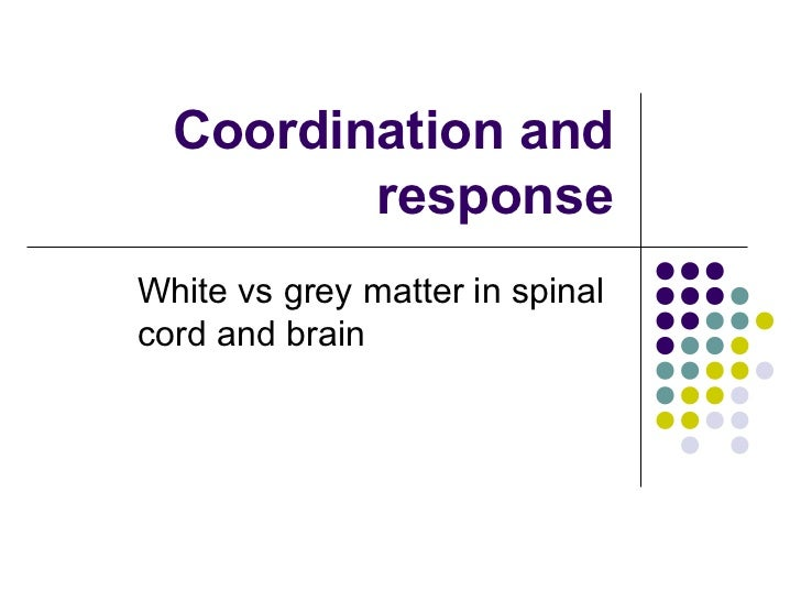 Coordination and         responseWhite vs grey matter in spinalcord and brain