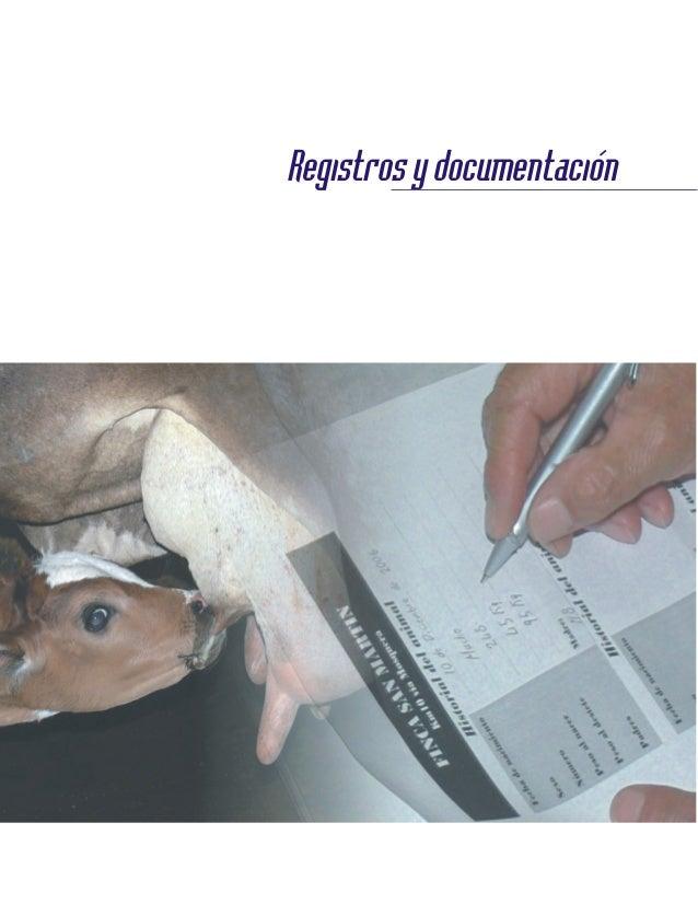 Registrosydocumentación