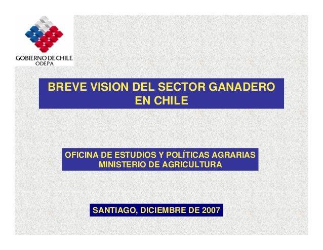 BREVE VISION DEL SECTOR GANADERO EN CHILE SANTIAGO, DICIEMBRE DE 2007 OFICINA DE ESTUDIOS Y POLÍTICAS AGRARIAS MINISTERIO ...