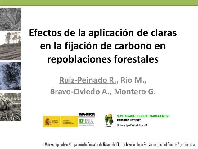 Efectos de la aplicación de clarasen la fijación de carbono enrepoblaciones forestalesRuiz-Peinado R., Río M.,Bravo-Oviedo...