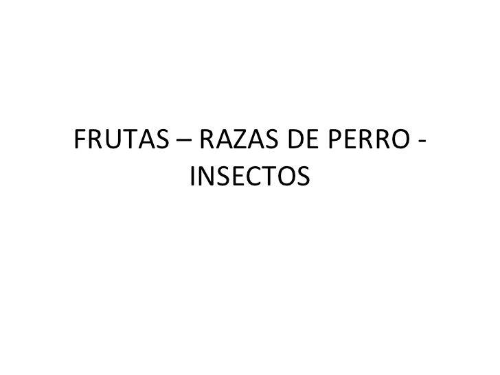 FRUTAS – RAZAS DE PERRO - INSECTOS