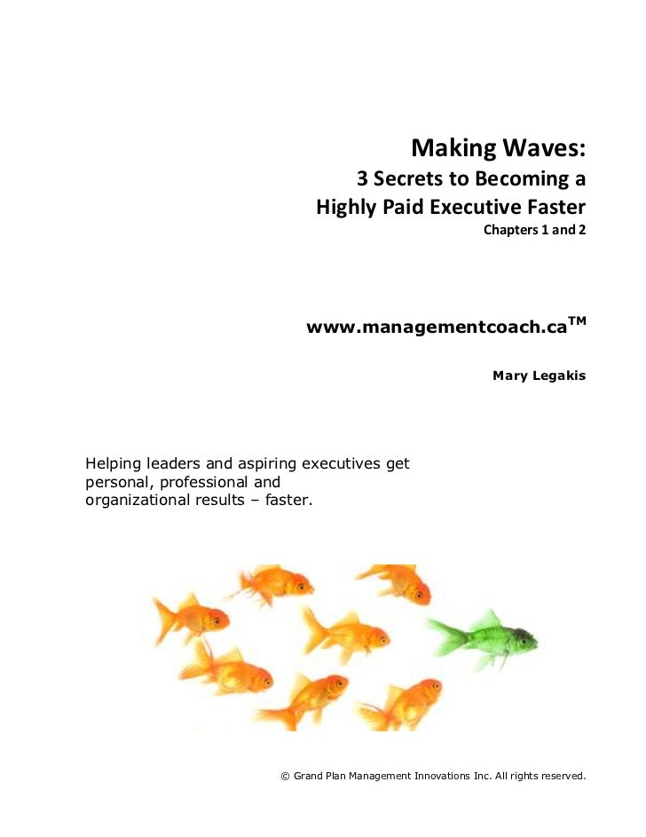 Making Waves:<br />3 Secrets to Becoming a<br />Highly Paid Executive Faster<br />Chapters 1 and 2<br />www.managementcoac...