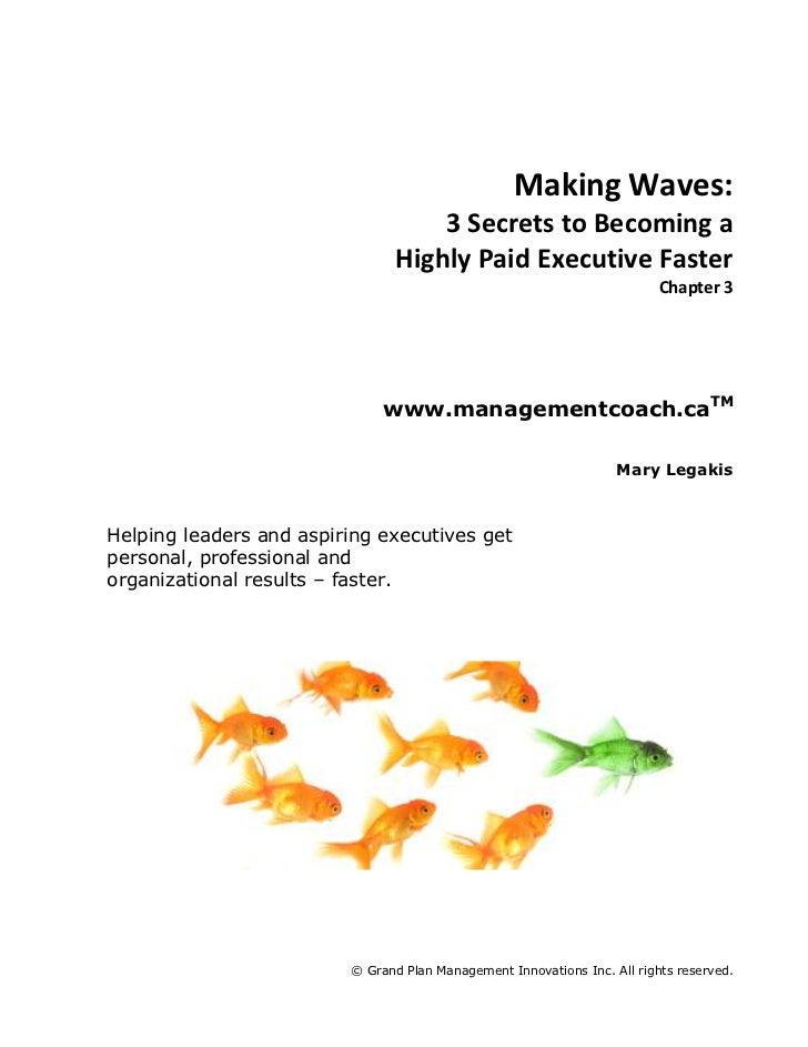 Making Waves:<br />3 Secrets to Becoming a<br />Highly Paid Executive Faster<br />Chapter 3<br />www.managementcoach.caTM<...