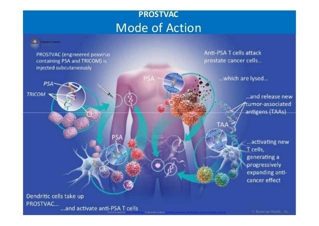 PROSTVAC Mode of Action Cirrhosis.pptx by Arun Viswanthan is licensed under a Creative Commons Attribution 4.0 Internation...