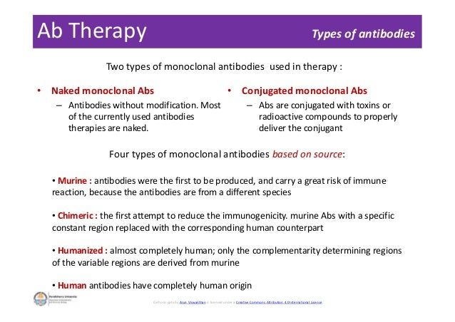 Ab Therapy • Naked monoclonal Abs – Antibodies without modification. Most of the currently used antibodies therapies are n...