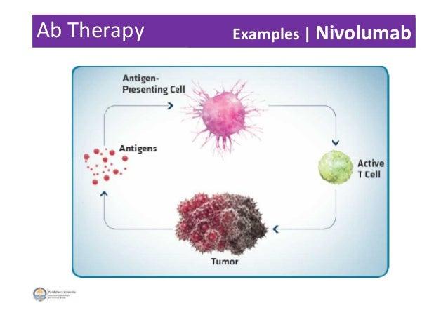 Ab Therapy Examples | Nivolumab