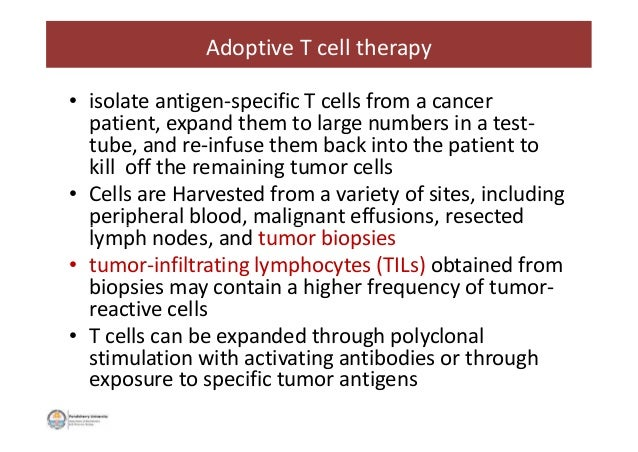 • isolate antigen-specific T cells from a cancer patient, expand them to large numbers in a test- tube, and re-infuse them...