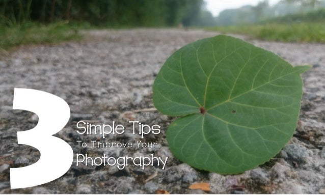*' Simple Tips    To Improve Your   Photography
