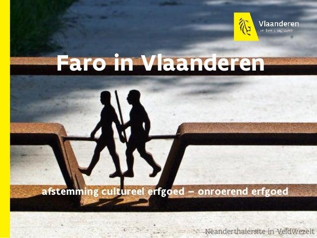 Faro in Vlaanderen afstemming cultureel erfgoed – onroerend erfgoed Neanderthalersite in Veldwezelt