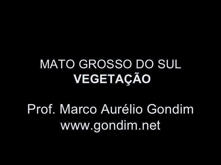 MATO GROSSO DO SUL     VEGETAÇÃOProf. Marco Aurélio Gondim      www.gondim.net