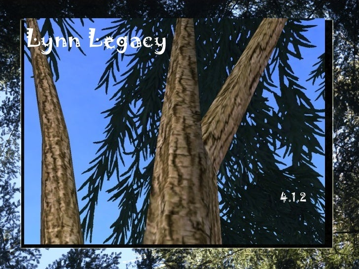Lynn Legacy 4.1.2