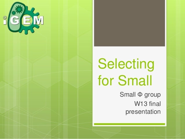 Selecting for Small Small Φ group W13 final presentation