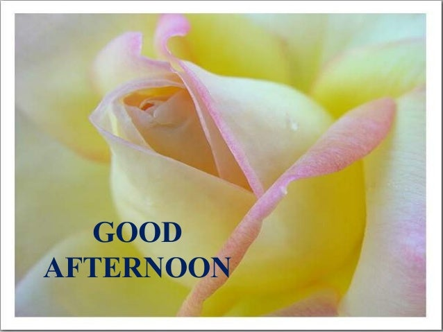 # GOOD MORNING Presenter Name GOOD AFTERNOON
