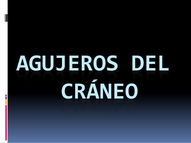 AGUJEROS DEL CRÁNEO