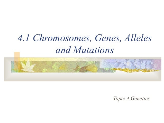 4.1 Chromosomes, Genes, Alleles and Mutations Topic 4 Genetics