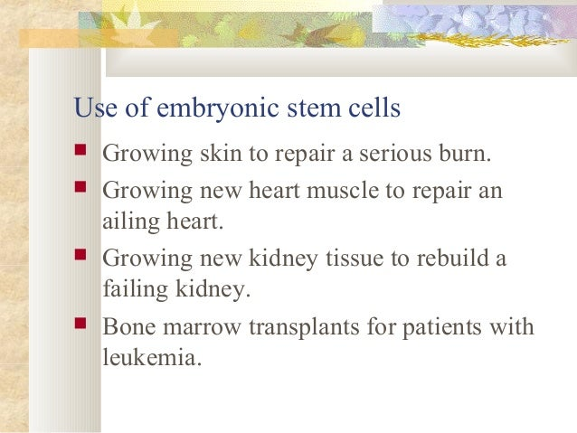 an argument against the use of embryonic stem cell Stem cell controversy  yet other cultures support embryonic stem cell research as they believe that  drug used in stem cell therapy may protect against smoke .